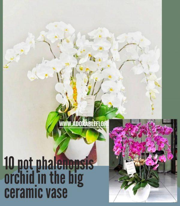 buket bunga wisuda murah