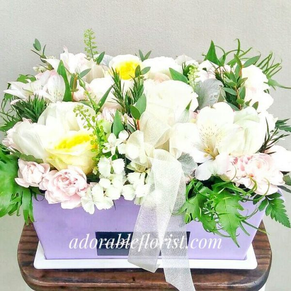 Adorable Box, White Touch of Yellow and Soft Pink