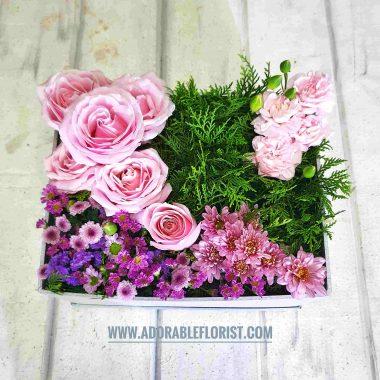 bunga lucu cantik